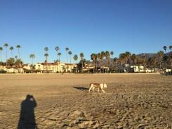 Taylor in Santa Barbara NYE_9240