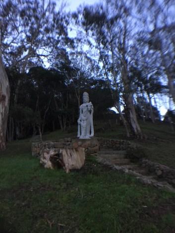 Fernwood at Night_9974
