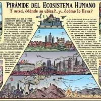 Pirámide del ecosistema humano