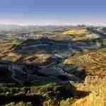 Andalucía y el referéndum de Cataluña