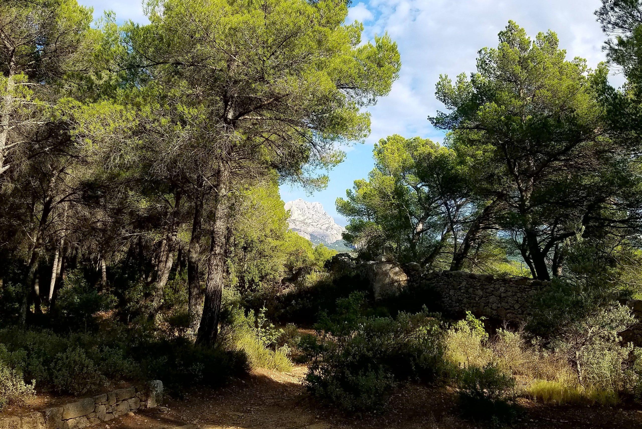 Carrière de Bibémus et montagne Sainte-Victoire