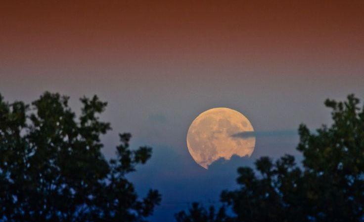 Moon of Serendipity