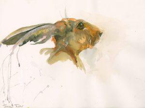 Jenny Tyler Pensive Hare