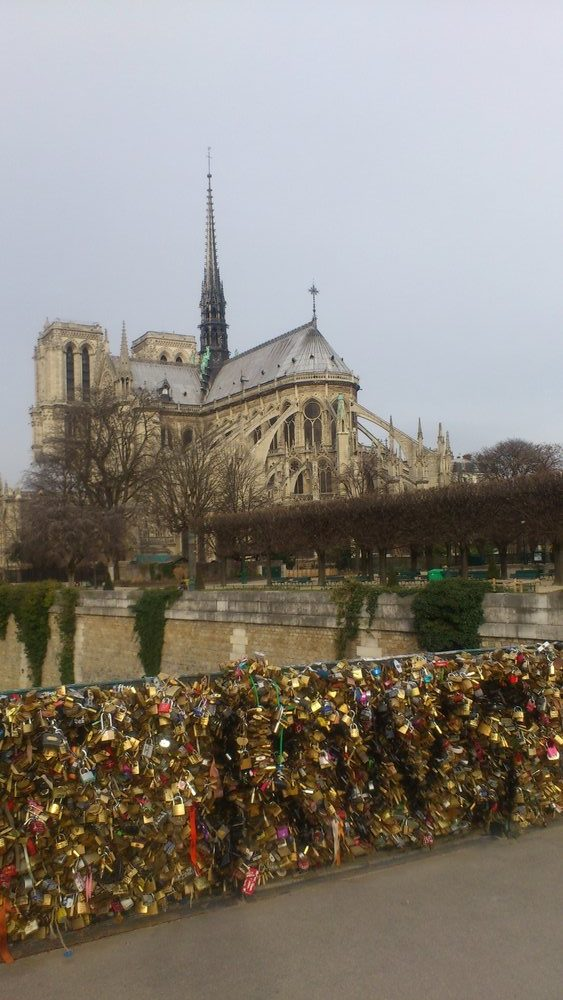 padlocks on bridge by Notre Dame