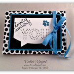 Sew Easy Paper Pumpkin Kit and April Blog Candy Winner