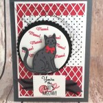 My Card with Nine Lives for Hand Stamped Sentiments