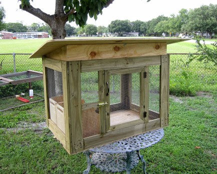 A small chicken coop is easier to build and can housed two or three chickens