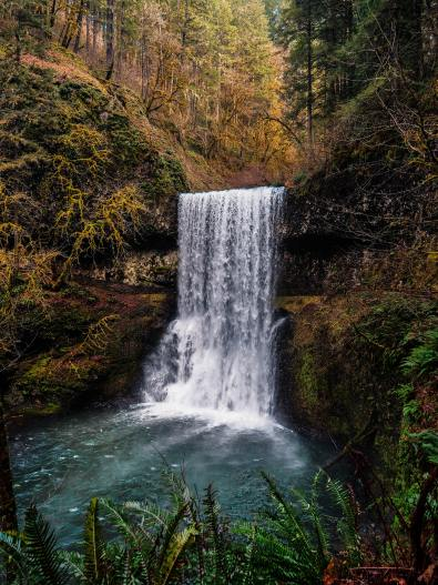 Forests provide the natural catchment of ground water