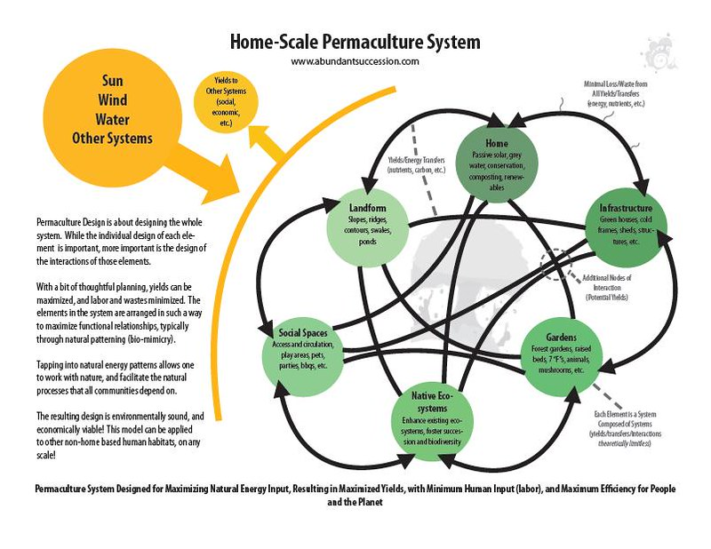 Permaculture System: An Illistration