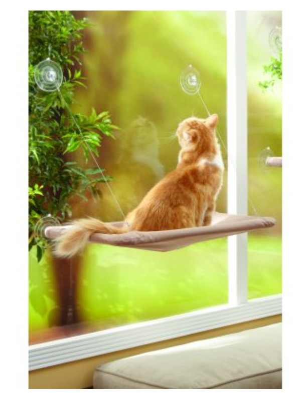 Window mount pet cat bed