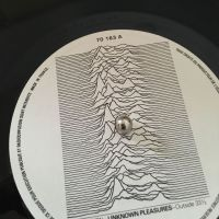 #unknownpleasures40