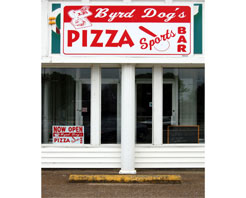 byrddogs