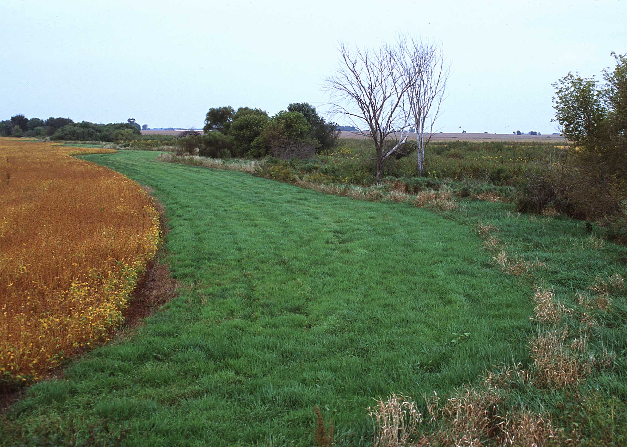 Maximizing Poultry Manure Use Through Nutrient Management