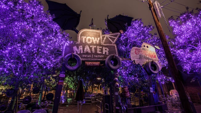 Halloween decorations and 2 signs identify Maters tow yard and the site of Maters Graveyard Jamboree