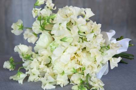 Types of flowers used in wedding bouquets beautiful flowers 2019 wedding flowers bridal bouquet diy farmer s market bouquet fresh types of flowers used in wedding diy farmer s market bouquet lovely types of flowers used mightylinksfo