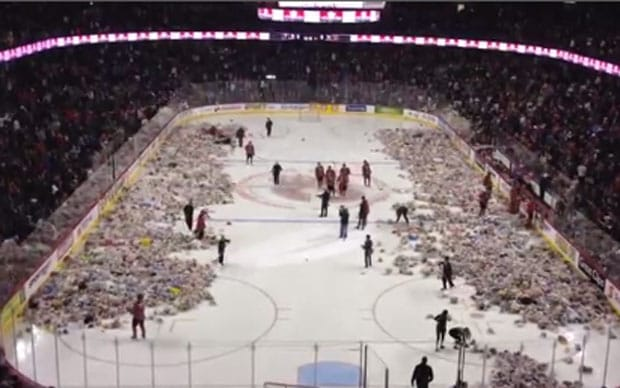 Video Calgary Teddy Toss Ice Hockey Fans Fling 25921 Stuffed Toys Onto Rink Telegraph