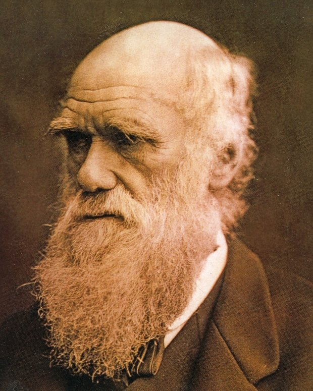 First picture of young Charles Darwin on HMS Beagle ...