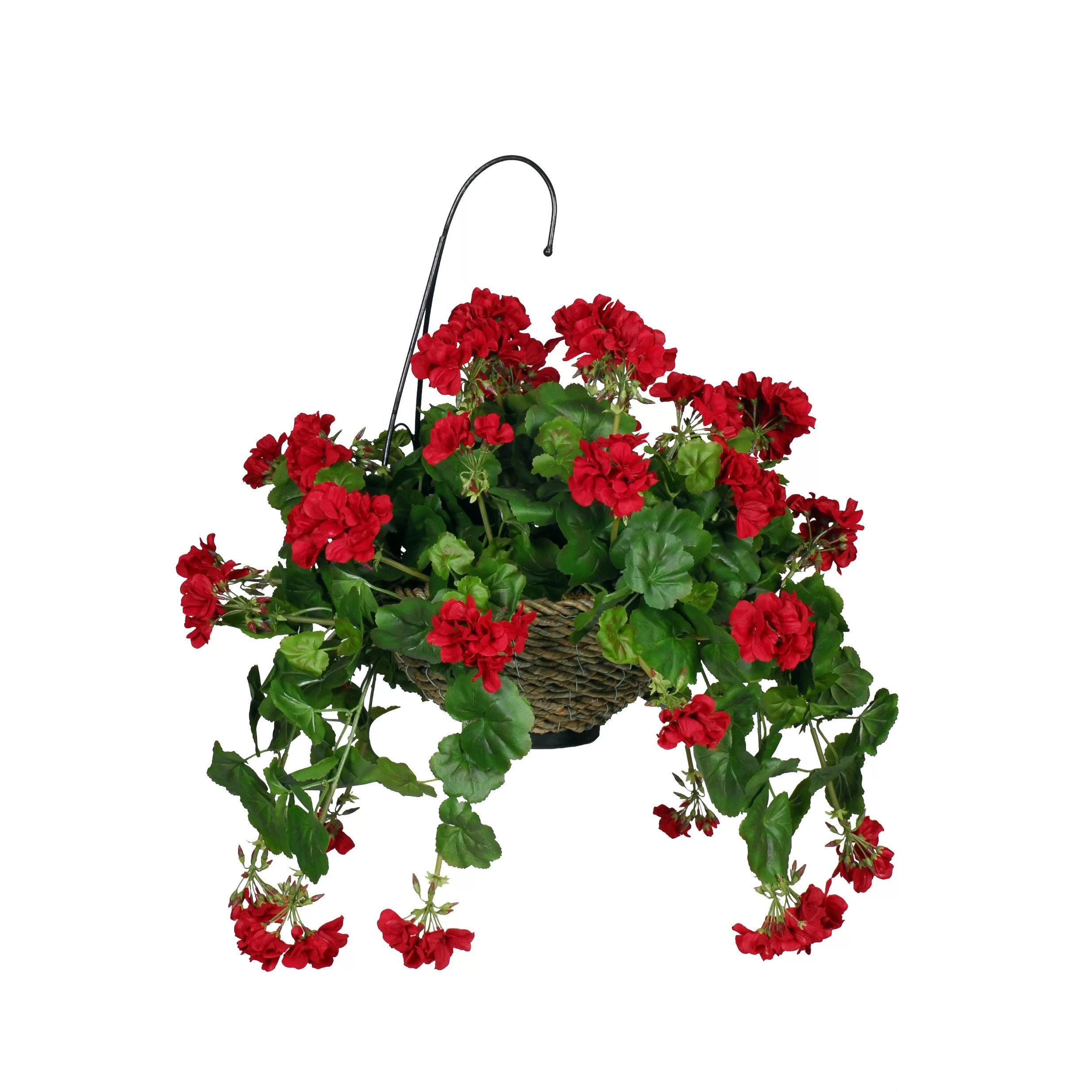 Indoor Hanging Baskets Sale