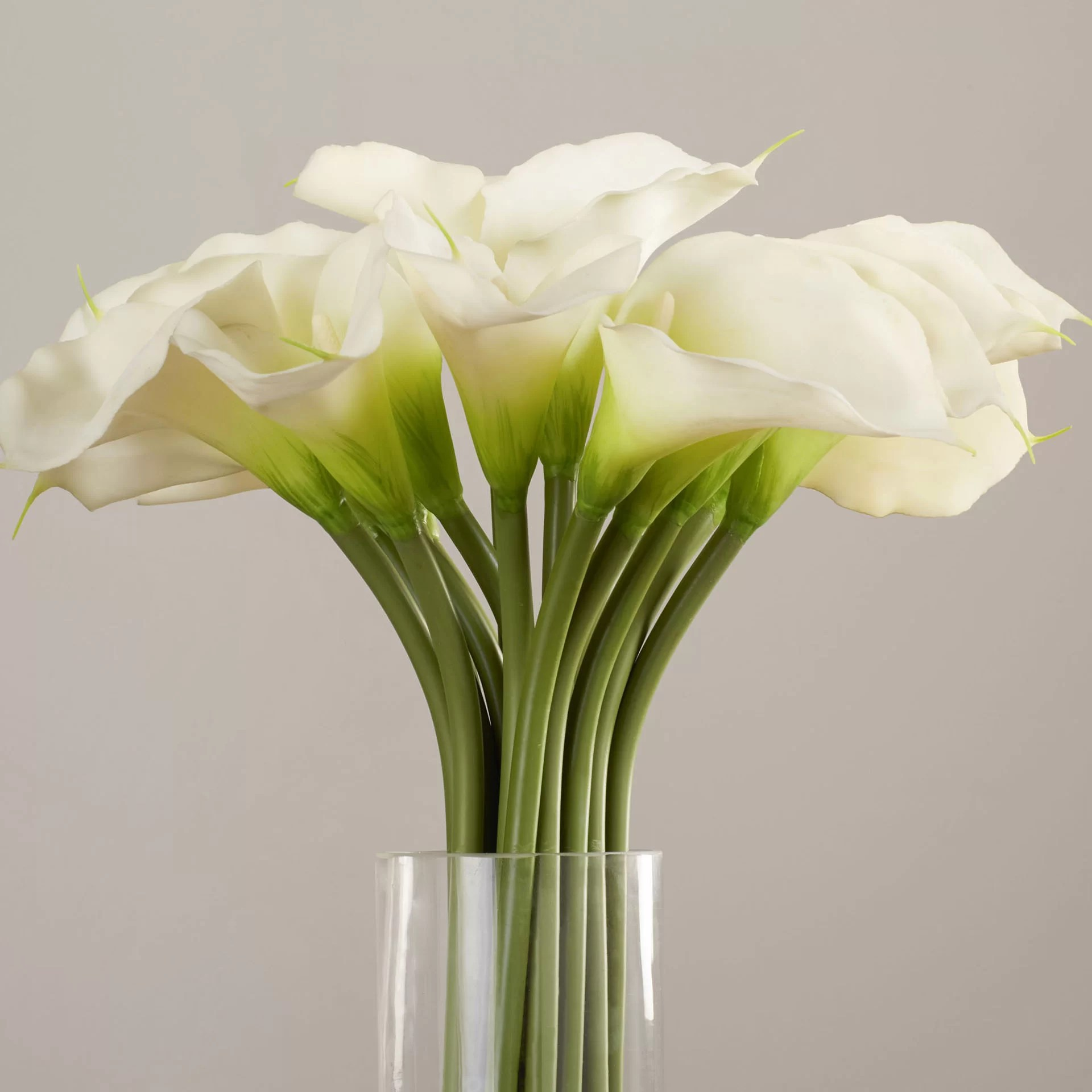House Of Hampton Calla Lily In Cylinder Silk Flower