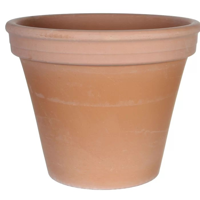terracotta planter