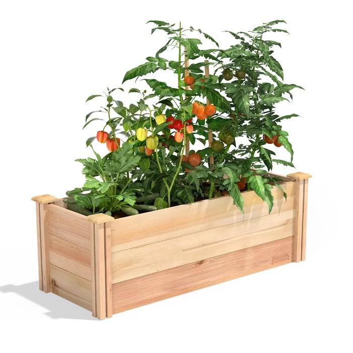 Dontae 4 ft x 1.5 ft Cedar Wood Raised Garden