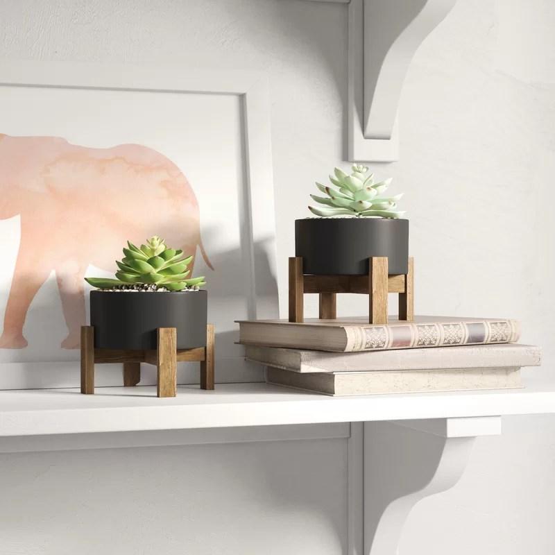 2 - Piece Artificial Evergreen Succulent in Pot Set (Set of 2)