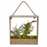 August Grove Air Artificial Succulent Plant In Decorative Hanging Frame Wayfair
