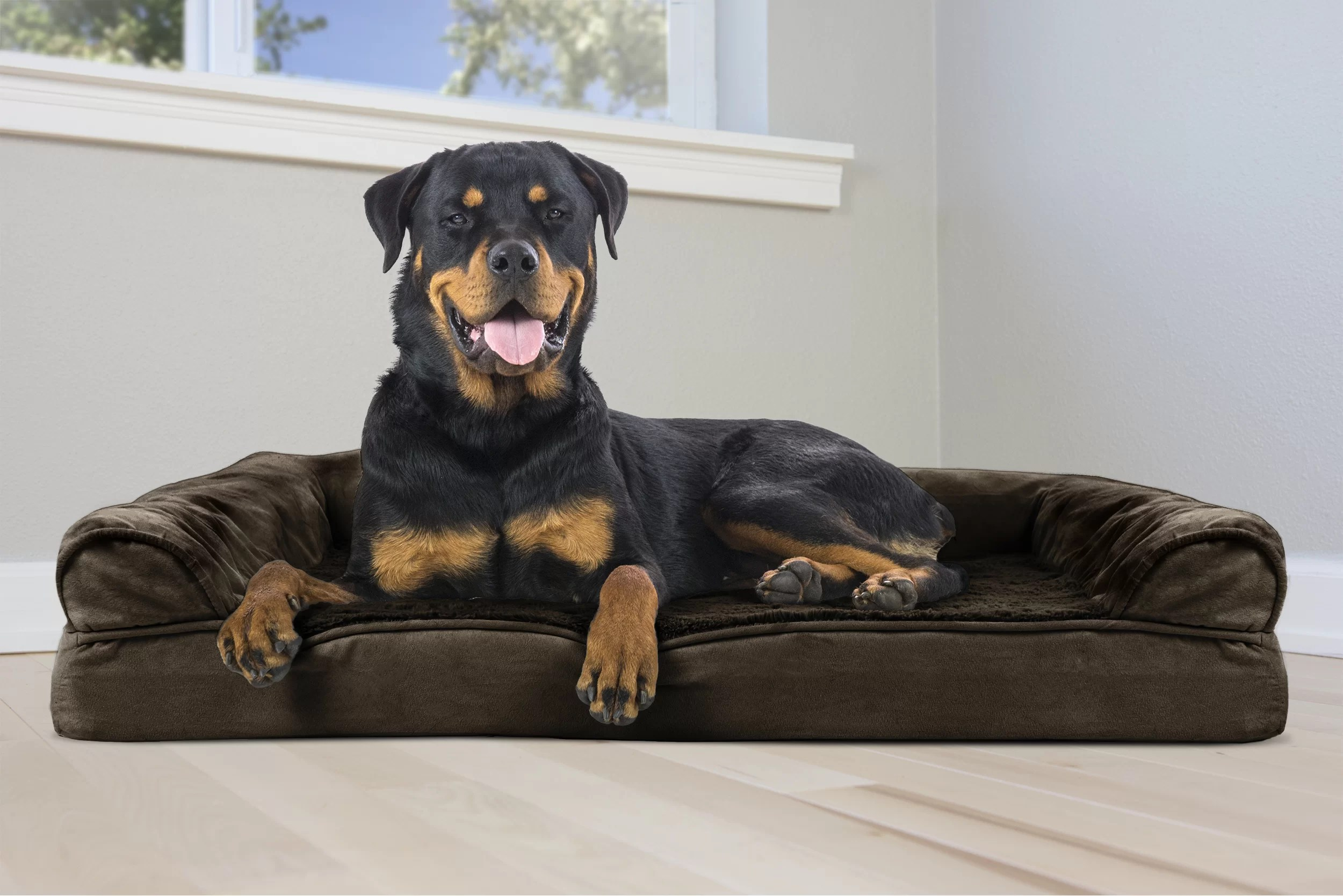 Extra Large Dog Beds From 19 99 Through 12 25