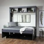 Red Barrel Studio Oberle Full Double Murphy Bed Wayfair