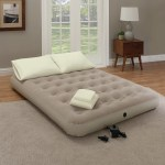 White Noise Pena 9 Air Mattress Reviews Wayfair