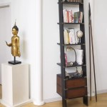 Cyrus Library Ladder Bookcase