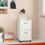 Zipcode Design Gigi 2 Drawer Mobile Vertical Filing Cabinet Reviews