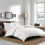 Winter Down Comforter Reviews Joss Main