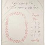 Harriet Bee Giana A Little Princess Was Born Personalized Milestone Blanket Wayfair