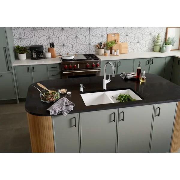 precis 30 l x 18 w double basin undermount kitchen sink