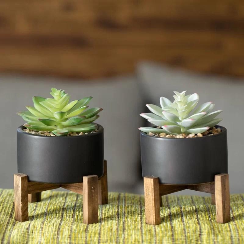 Decorative Succulents Plants Artificial