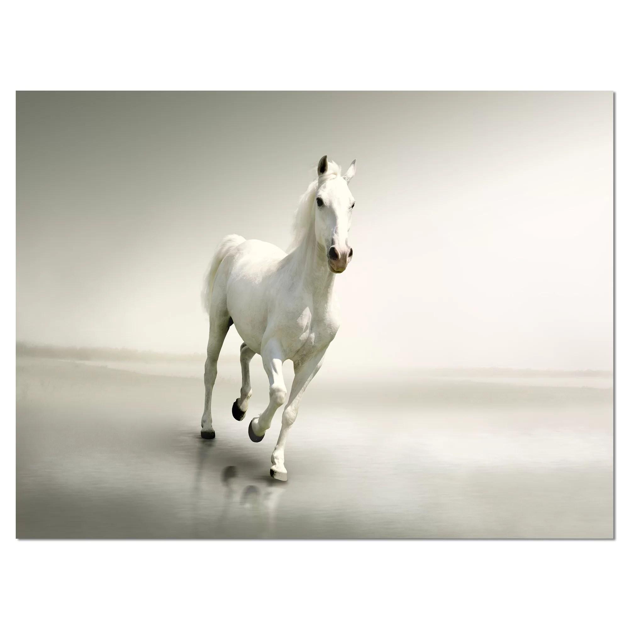 Orren Ellis Beautiful White Horse Running Photographic Print On Wrapped Canvas Wayfair