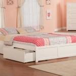 Beachcrest Home Alayah Queen Storage Platform Bed Reviews