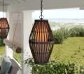 Beachcrest Home Sol Black 1 Bulb 21 19 H Plug In Outdoor Pendant Reviews Wayfair Ca