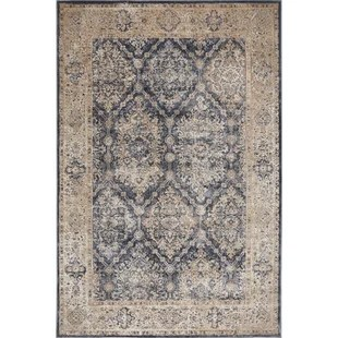 Nicole Miller Home Decor   Wayfair Nicole Miller Palmer Morteza Gray Area Rug
