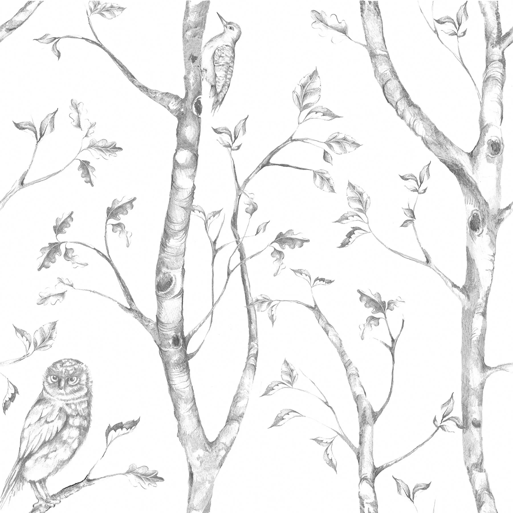 August Grove Nome Gray Woods Peel And Stick Wallpaper