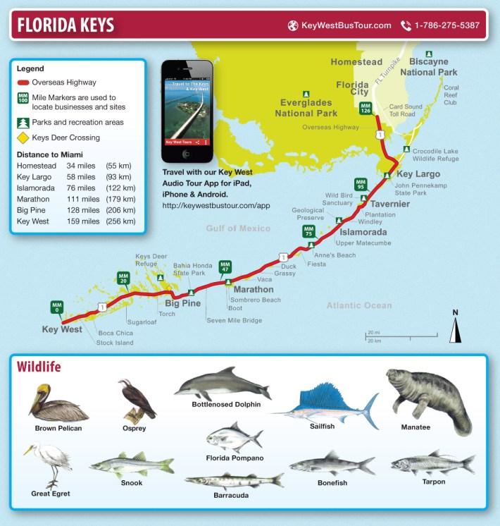 key west und florida keys karte - die reise nach miami