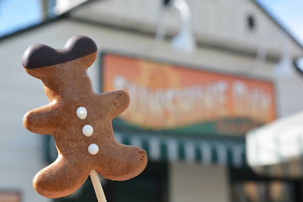 Gingerbread Pops from Sunshine Day Café at Disney's Hollywood Studios