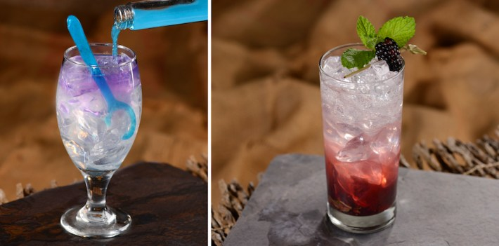 Transformation Potion and Stone Fruit and Berry Breeze Non-Alcoholic Beverages at Storybook Dining at Artist Point at Disney's Wilderness Lodge