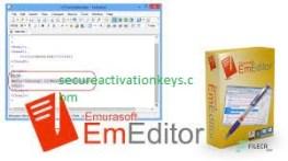 EmEditor Professional 21.1.1 (64-bit) Crack