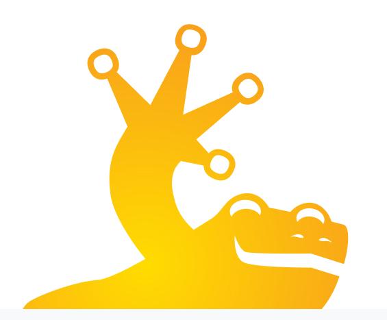 chameleon vpn protocol