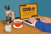 online fraud coronavirus scams bullguard