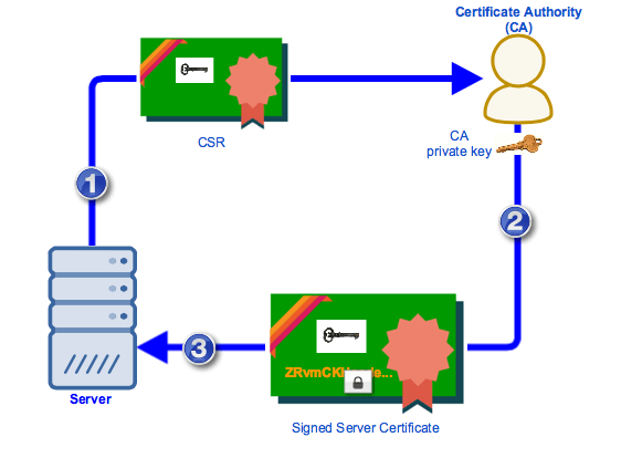 how do Certificate Authority work