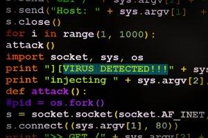 Cyber Predator Attacks - Virus Detected