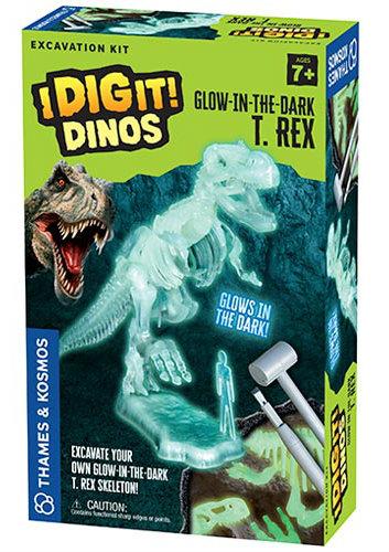 I_DIG_IT_GITD_TREX_BOX_3D